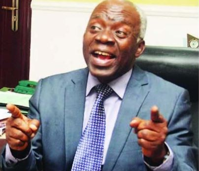 2019: No one can annul elections in Nigeria again Femi Falana