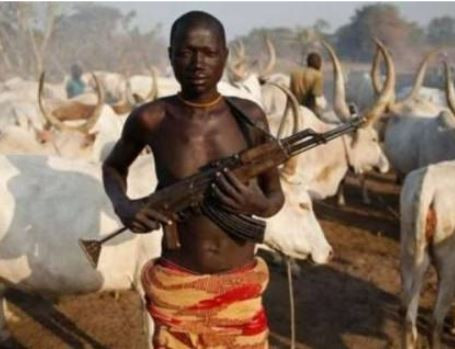 11 people killed as herdsmen and farmers clash In Taraba State