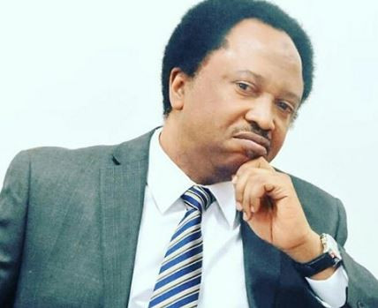 'Dear Governor Akeredolu, please leave this Indian hemp matter for now' - Senator Shehu Sani