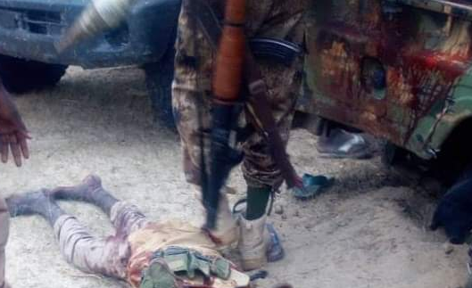 Boko Haram militants killed in joint operation by Nigerian and Chadian armies