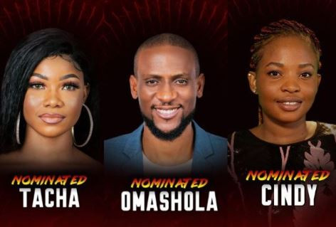#BBNaija: Cindy, Omashola, Tacha, six othersnominatedfor possible Eviction