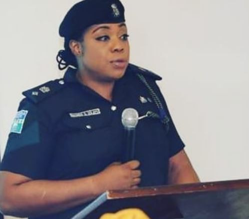 'Thisis indeed shameful to us as a nation and it calls for sober reflection'- Dolapo Badmus reacts to FBI's arrest of 77 Nigerians for fraud