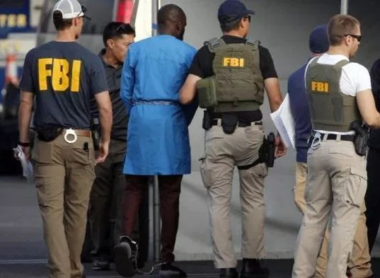 77 Nigerians Arrested By FBI:'All races and ethnic nationalities have their own fair share of criminals and deviants' - FFK defend Igbos