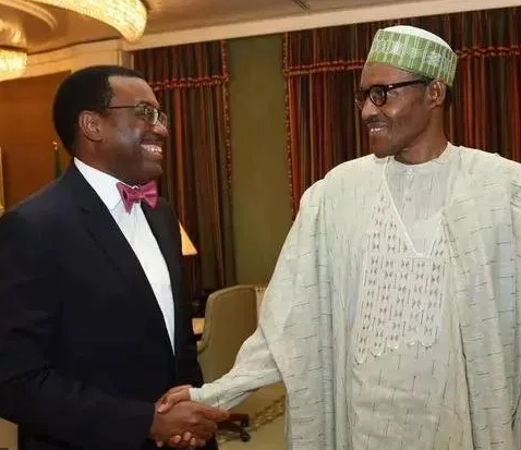 Buhari nominatesAkinwunmi Adesina for re-election as President of African Development Bank (AfDB)