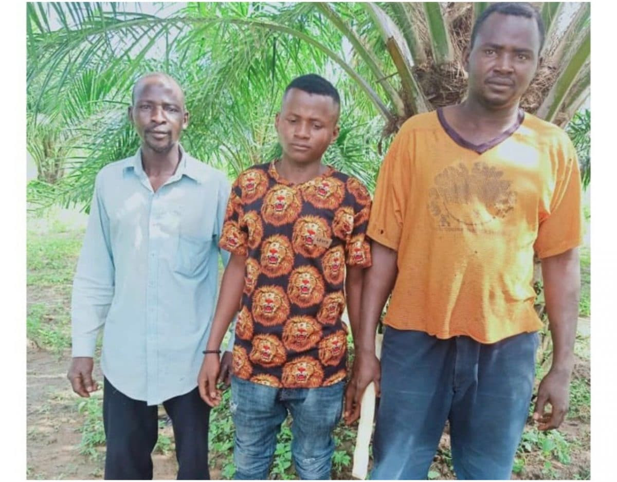3 farmers rescued in Kaduna as troops kill bandit lindaikejisblog
