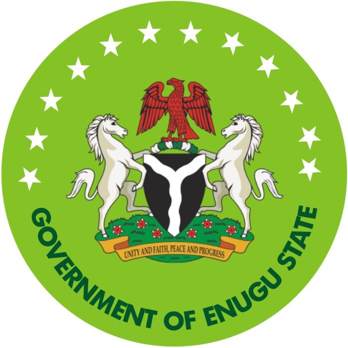 Enugu confirms 9-year-old as new case of coronavirus lindaikejisblog