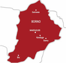 Borno suspends lockdown; Churches and Mosques asked to reopen lindaikejisblog
