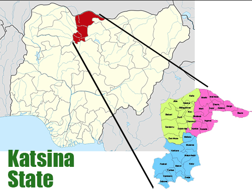 Katsina records 13 deaths, discharges 51 patients who recovered from Coronavirus lindaikejisblog