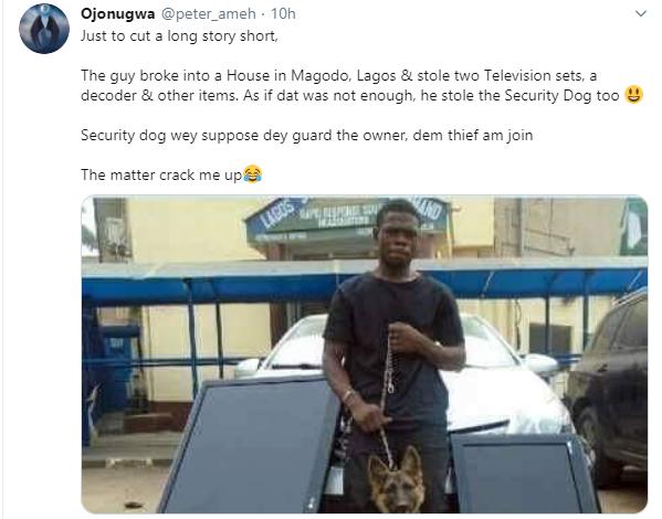 Armed robber arrested after steals security dog and other household items lindaikejisblog 1