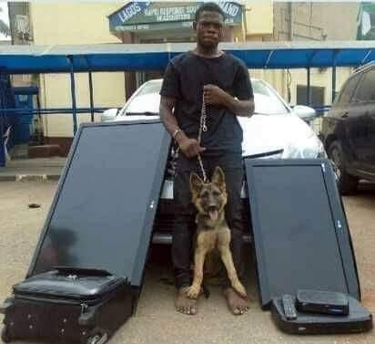 Armed robber arrested after steals security dog and other household items lindaikejisblog