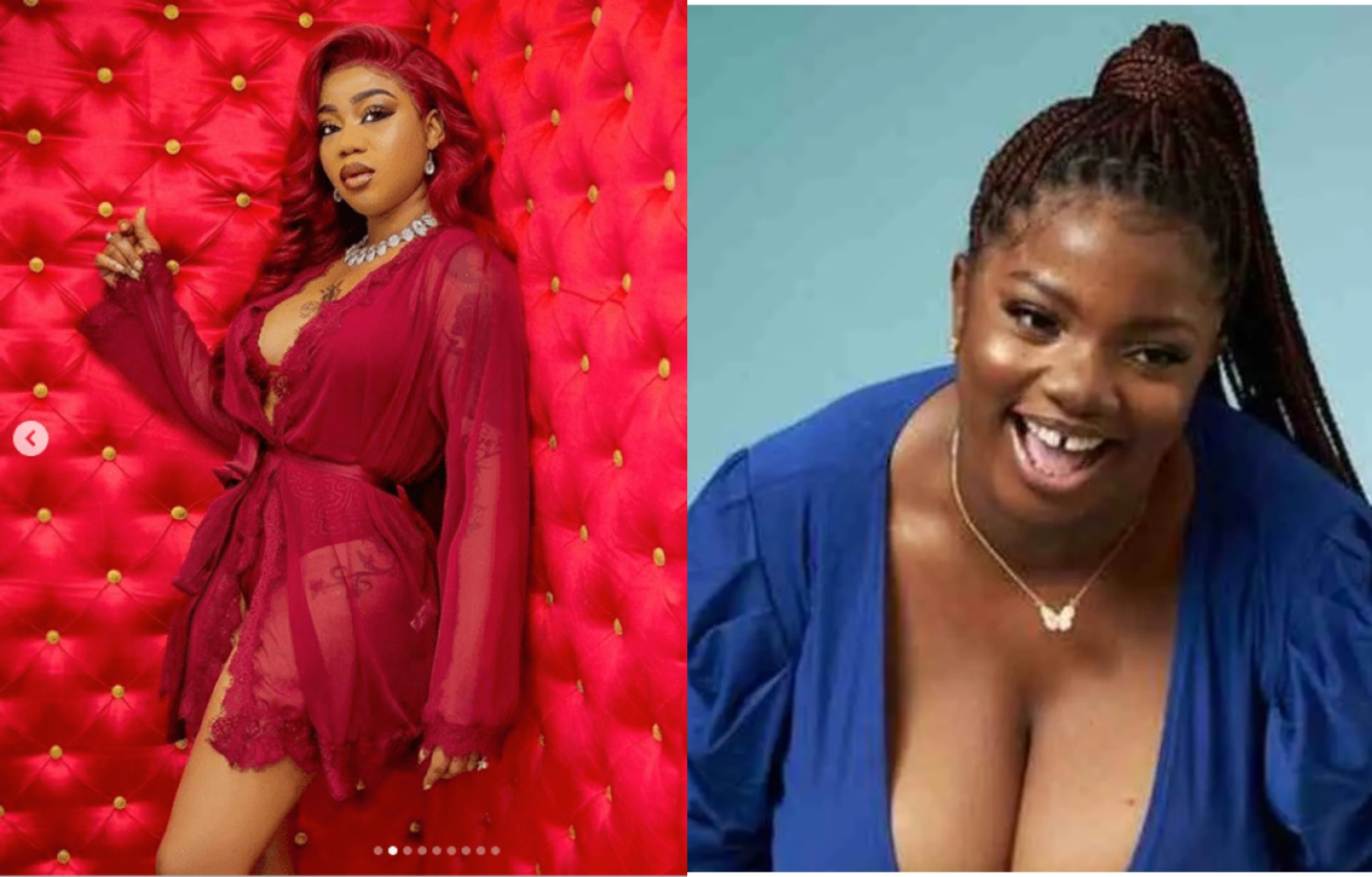 The real runs girl is in the house with Dorathy - Toyin Lawani reacts to photo of BBNaija housemate being found on escort service website lindaikejisblog