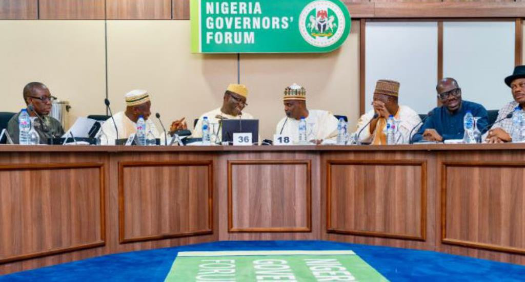 Governors didnt hoard COVID-19 palliatives NGF lindaikejisblog