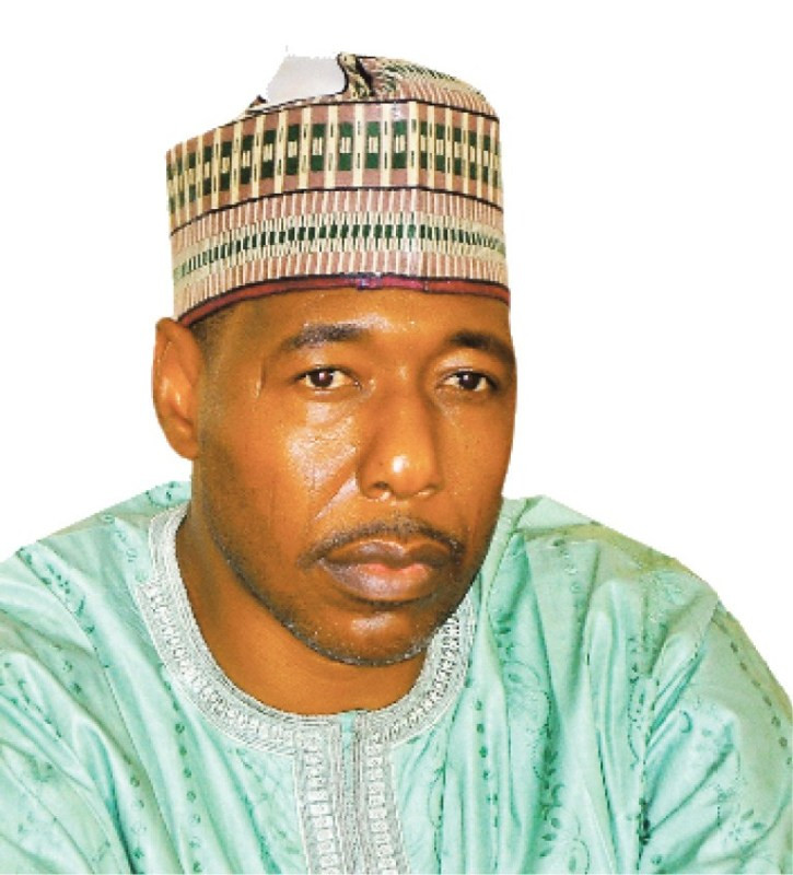 Shores of Lake Chad, Sambisa forest and Mandara Hills are the most affected by insurgents who attack communities and return to their hideouts - Governor Zulum lindaikejisblog