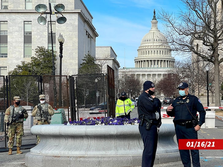 I was lost and made an 'honest mistake' - Virginia man says after being arrested at a DC checkpoint with guns and ammo ahead of Biden's inauguration lindaikejisblog 2
