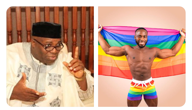 I knew I was gay at 10 — Former Presidential spokesperson Doyin Okupe's son, Bolu says