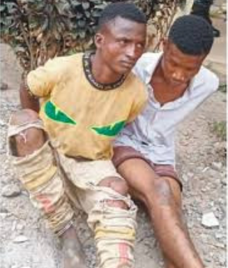 I conspired with my herdsman friend to abduct and kill my nephews- suspect tells police