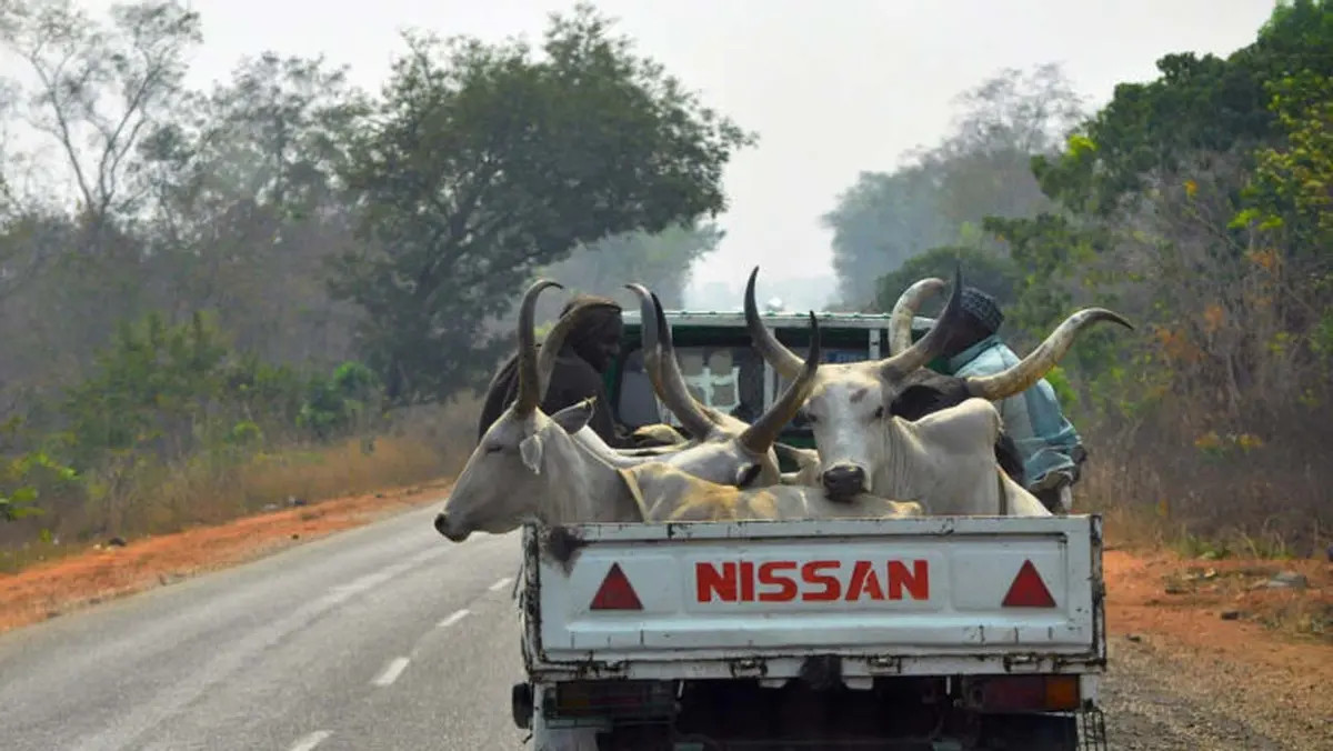 DSS invites cattle dealers over food blockade to the South