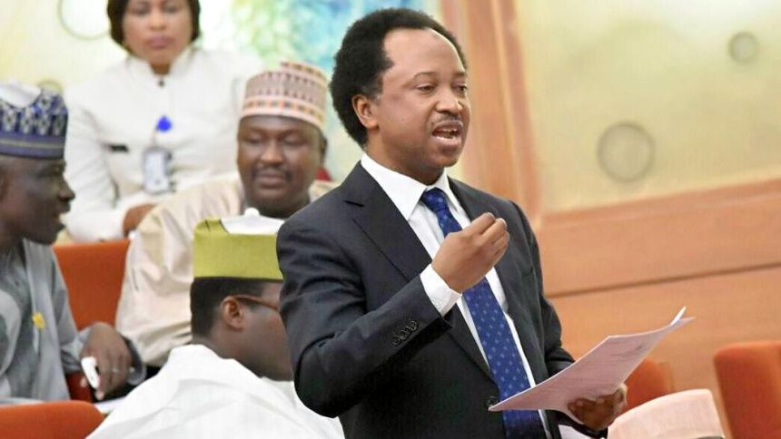 It appears ladies have more uncles than guys - Shehu Sani
