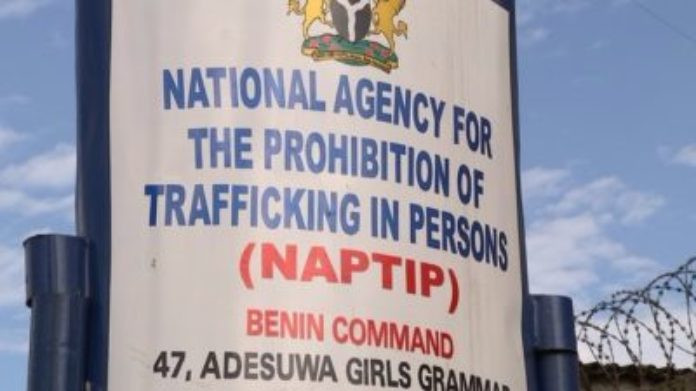 NAPTIP reunites human trafficking victim with family after 20 years