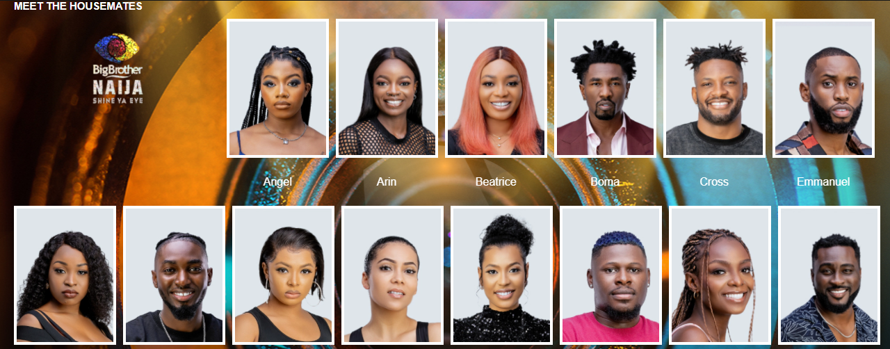 Meet the 22 #BBNaija housemates  1