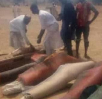 Armed bandits kill 7, abduct pregnant woman in Zamfara (photos)